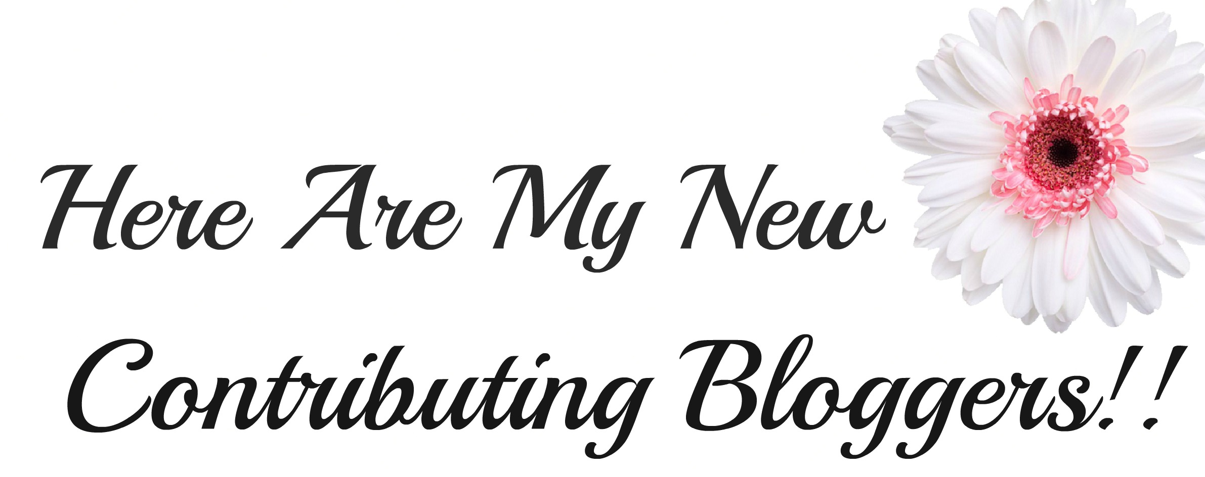 Contributing Bloggers