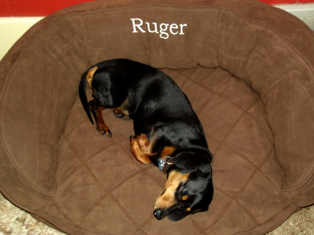 Personalized Microfiber Quilted Bolster Dog Bed
