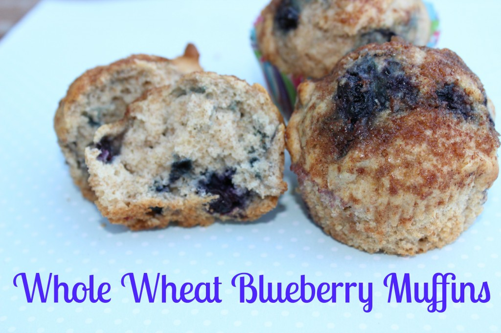 Whole Wheat Blueberry Muffins with Organic Blueberries