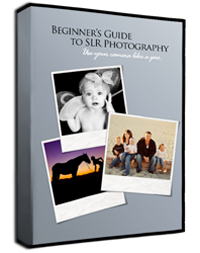 Beginners Guide to SLR Photography