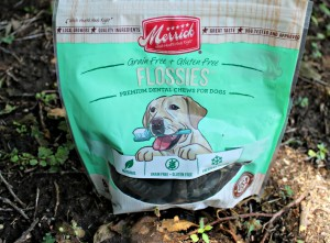 Flossies – A Grain-Free Dental Chew That Cleans and Freshens Breath
