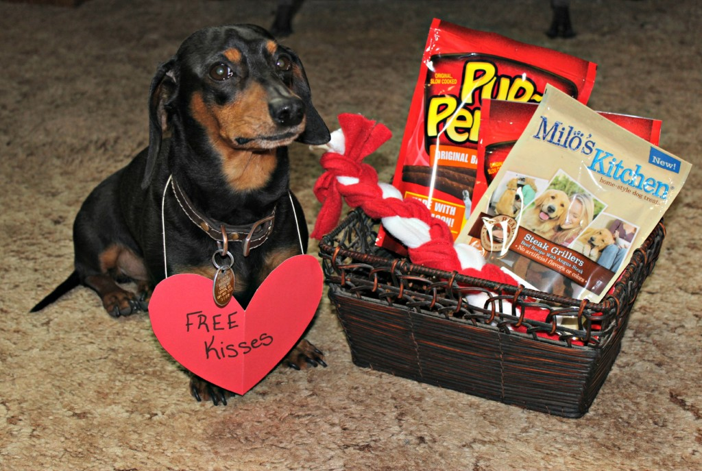 Big Heart Pet Treats