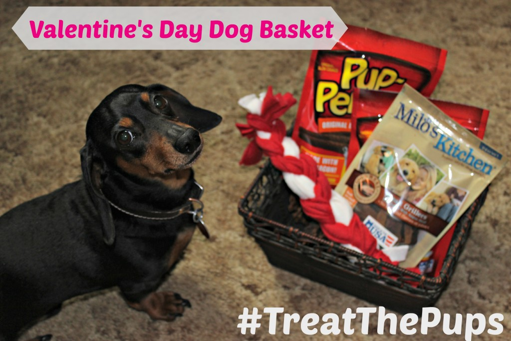 Valentine's Day Dog Gift Basket