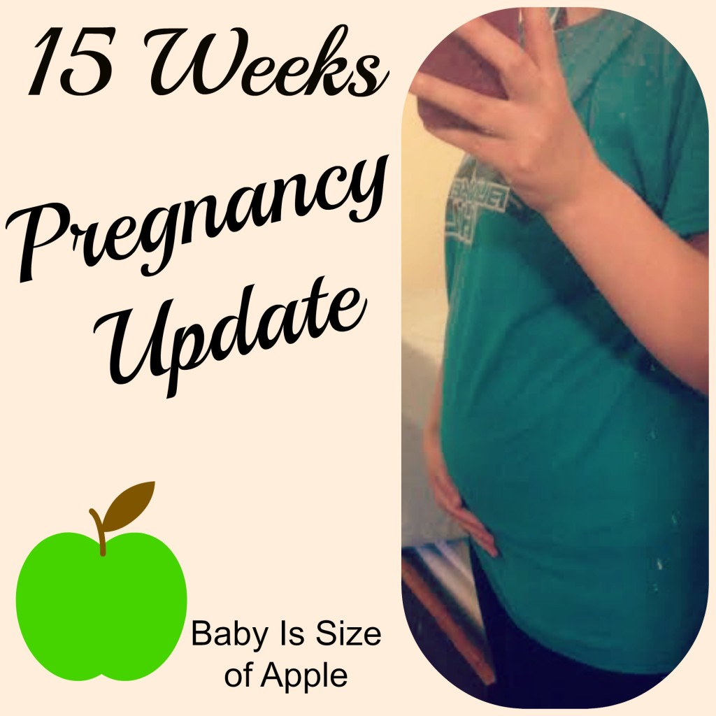 15 week pregnancy update