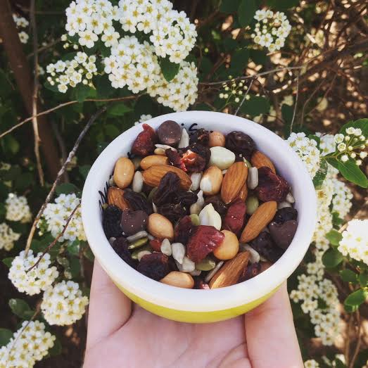 Fiona's Mountain Trail Mix