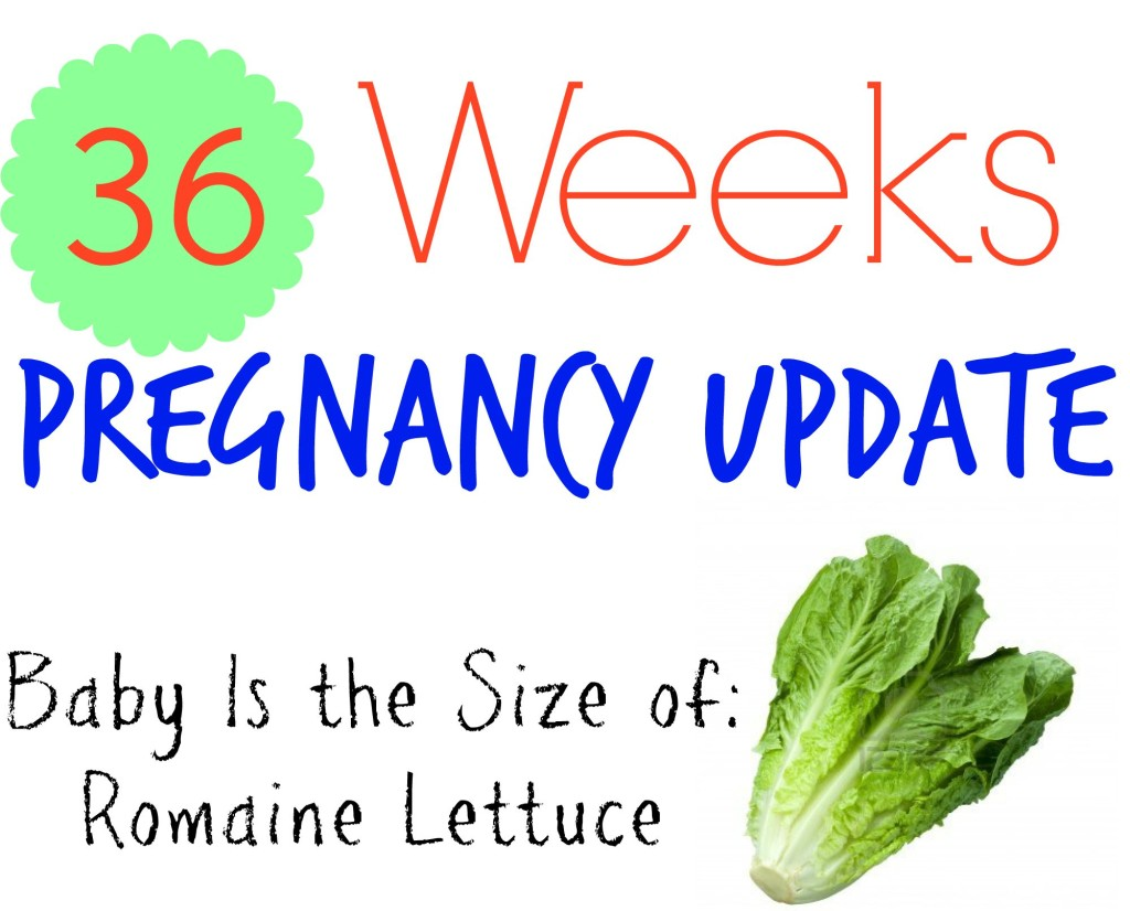 36 Weeks Pregnancy Update