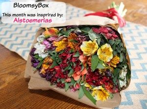 BloomsyBox – Flowers of The Month Club