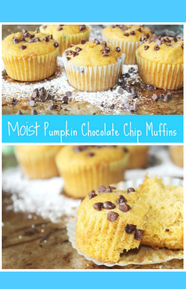 The BEST Moist Pumpkin Chocolate Chip Muffins Recipe Ever!